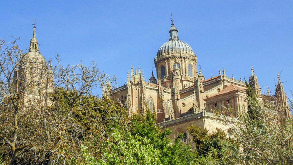 Catedral de Salamanca 11