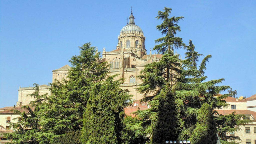 Catedral de Salamanca 12